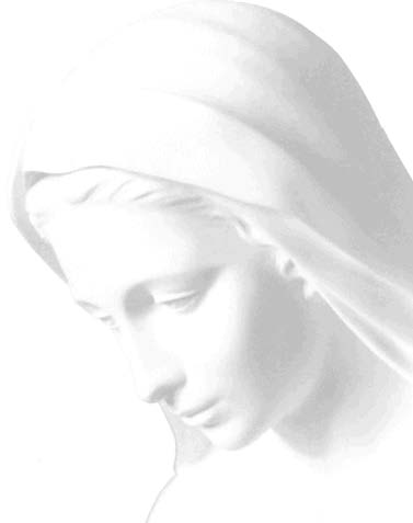 Ave Maria (Verbum panis)