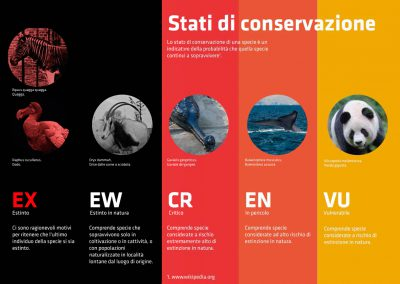 Stati di conservazione