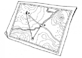 La mappa botanica